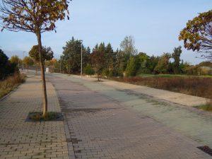 L'école est entourée d'arbres, isolée au bout d'un projet d'urbanisation abandonné.